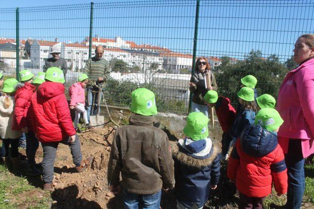 Gavião| alunos plantaram Amendoeiras, Freixos, Sobreiros e Carvalhos no dia da árvore